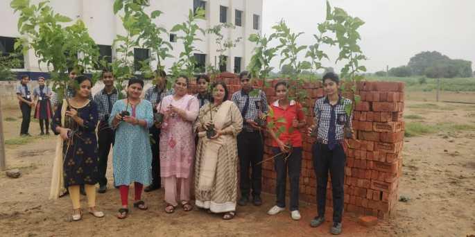 Tree plantation at Faridabad